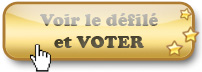 http://static.ma-bimbo.com/i18n/fr/modules/election/img/forum/btn-election.i18n.jpg